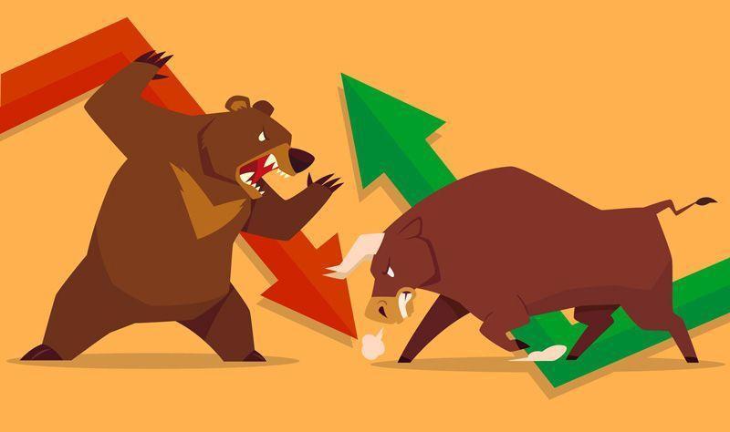 interpretar la intensión y fuerza de los toros o los osos